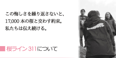 桜ライン311について