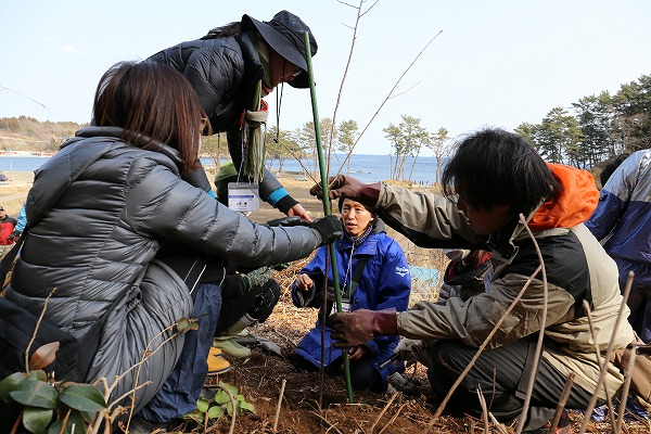 2014年3月16日「桜ライン311の軌跡」写真展/共催イベント岡本翔馬トークショー開催のお知らせ