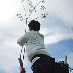 植樹作業をするスタッフ